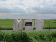 2012-7-10-EvaDamave-(50)